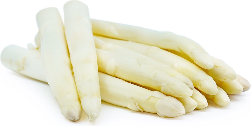 FRESH WHITE ASPARAGUS FROM PERU As of August 21st